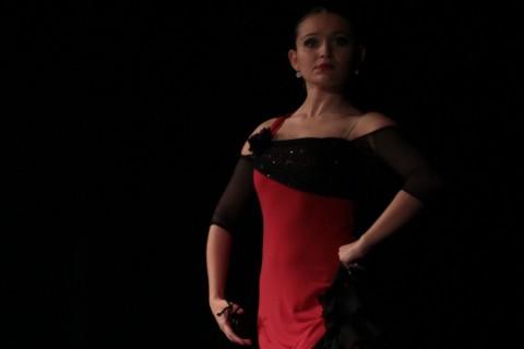 examenesdanza 1100x600 480x320 - Calendario de exámenes de danza de Madrid