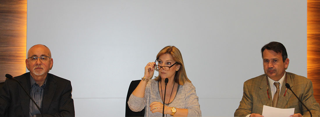 asamblea adeiv2015 1100x403 - I Jornada de centros de educación infantil de Castellón