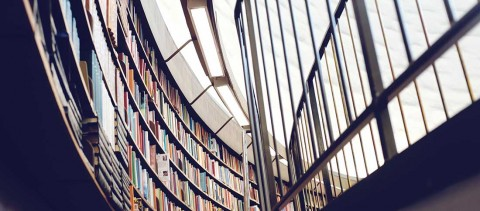 library 1100x483 480x211 - El neurocientífico Fernando de Mora participará en el Centro Inglés