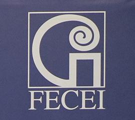 logo-fecei-270x240