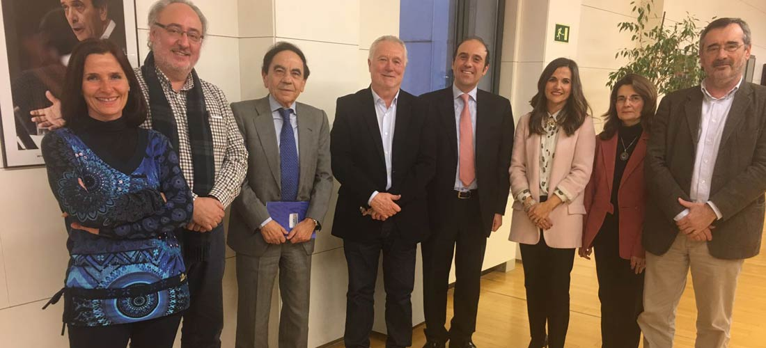 comision web - El presidente de ACADE y de la Comisión de Educación de CEOE se reúne con el Grupo Parlamentario del PSOE