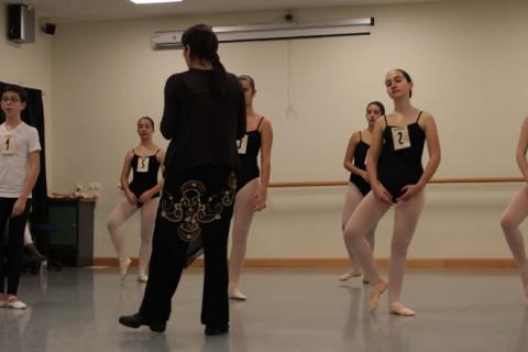 danza clasica web 480x320 - Los exámenes de Ballet clásico en Andalucía tendrán lugar el 25 y 26 de marzo