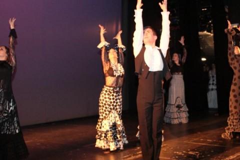gala danza web 480x320 - La IV Gala de Danza de ACADE tendrá lugar el domingo 2 de abril en Madrid