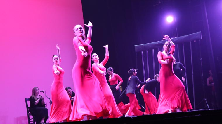 cuarta gala de danza acade 2017 100 - Reportaje fotográfico de las galas de danza