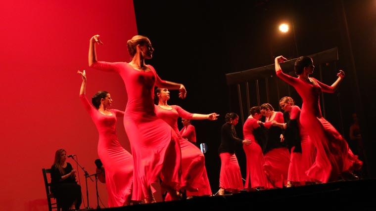 cuarta gala de danza acade 2017 101 - Reportaje fotográfico de las galas de danza