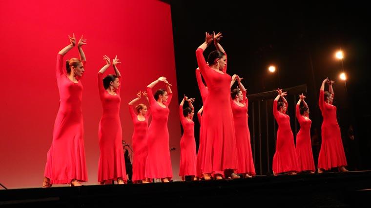 cuarta gala de danza acade 2017 103 - Reportaje fotográfico de las galas de danza