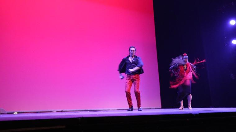 cuarta gala de danza acade 2017 105 - Reportaje fotográfico de las galas de danza