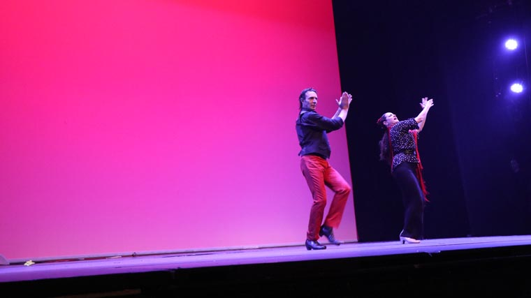cuarta gala de danza acade 2017 106 - Reportaje fotográfico de las galas de danza