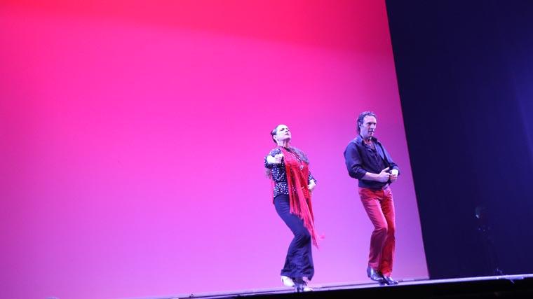cuarta gala de danza acade 2017 109 - Reportaje fotográfico de las galas de danza