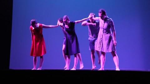 cuarta gala de danza acade 2017 34 480x270 - Nota de prensa en defensa del sector de la danza, en relación a la Gala de los Goya 2019.