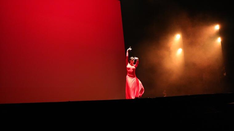 cuarta gala de danza acade 2017 47 - Reportaje fotográfico de las galas de danza