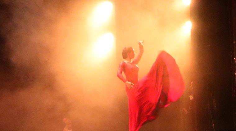 cuarta gala de danza acade 2017 48 - Reportaje fotográfico de las galas de danza