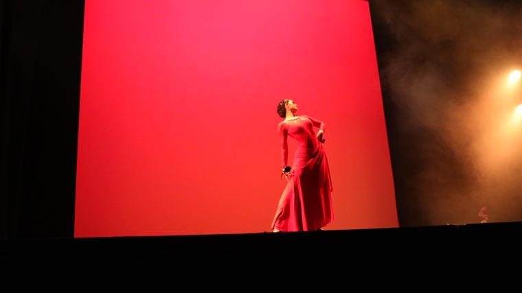 cuarta-gala-de-danza-acade-2017-50