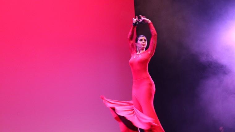 cuarta gala de danza acade 2017 52 - Reportaje fotográfico de las galas de danza