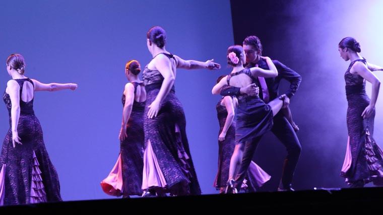 cuarta gala de danza acade 2017 53 - Reportaje fotográfico de las galas de danza