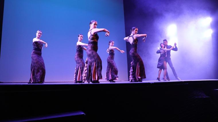 cuarta gala de danza acade 2017 56 - Reportaje fotográfico de las galas de danza