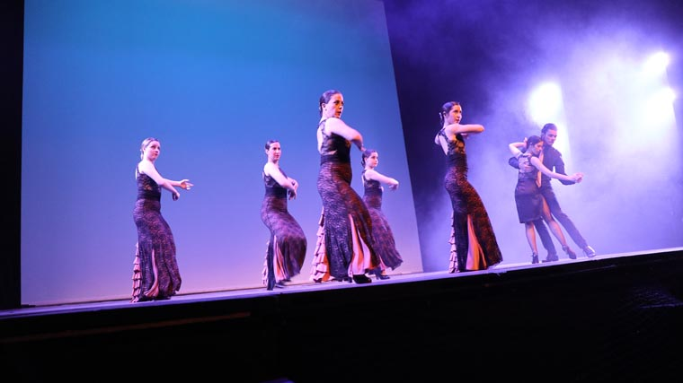 cuarta gala de danza acade 2017 58 - Reportaje fotográfico de las galas de danza