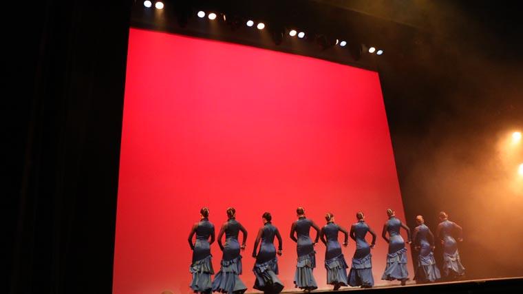cuarta gala de danza acade 2017 64 - Reportaje fotográfico de las galas de danza