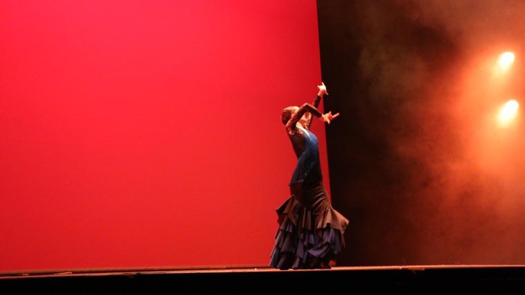 cuarta gala de danza acade 2017 75 - Reportaje fotográfico de las galas de danza