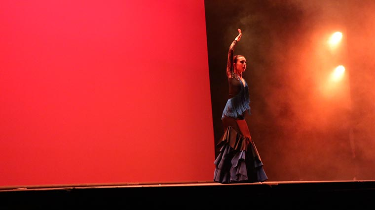 cuarta gala de danza acade 2017 76 - Reportaje fotográfico de las galas de danza