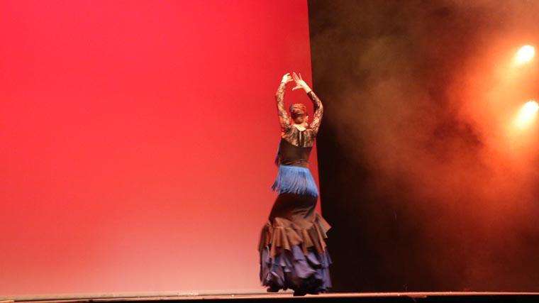 cuarta gala de danza acade 2017 77 - Reportaje fotográfico de las galas de danza