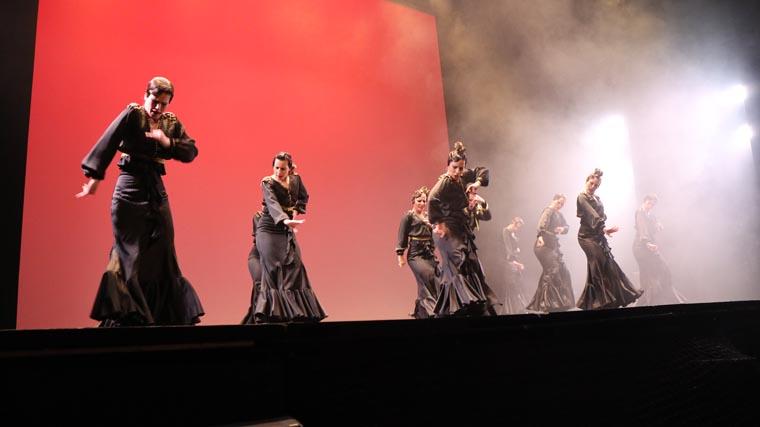 cuarta gala de danza acade 2017 88 - Reportaje fotográfico de las galas de danza