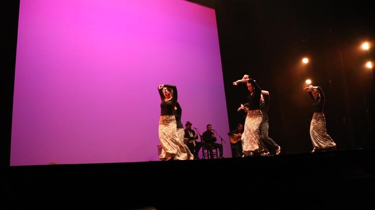 cuarta gala de danza acade 2017 93 - Reportaje fotográfico de las galas de danza
