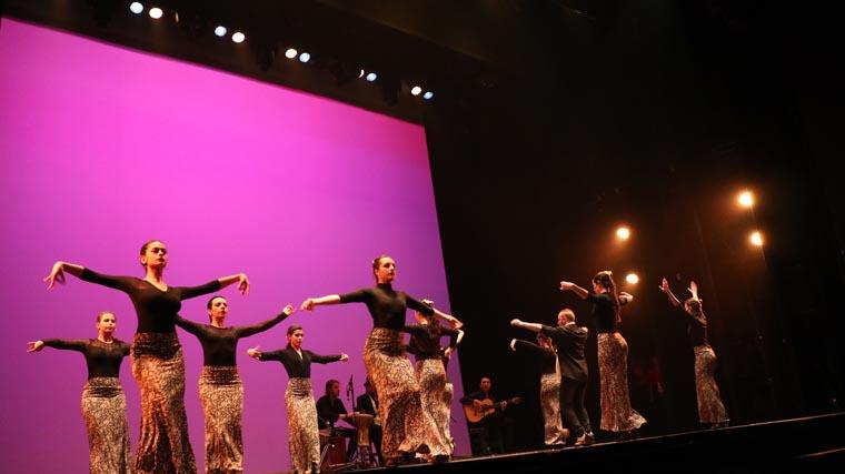 cuarta gala de danza acade 2017 94 - Reportaje fotográfico de las galas de danza