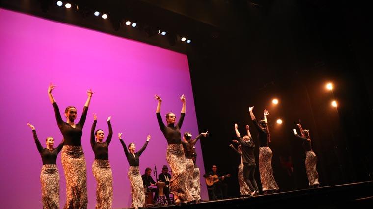 cuarta gala de danza acade 2017 95 - Reportaje fotográfico de las galas de danza