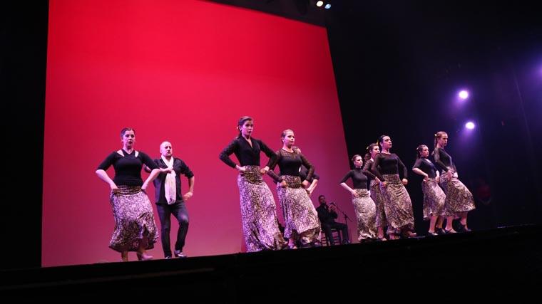 cuarta-gala-de-danza-acade-2017-96