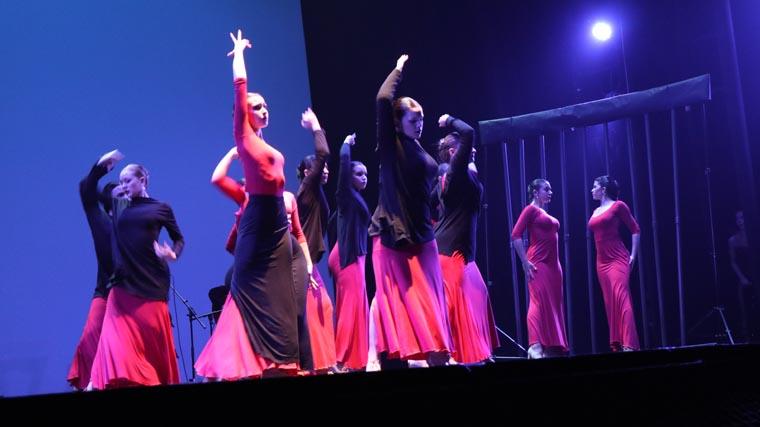 cuarta gala de danza acade 2017 99 - Reportaje fotográfico de las galas de danza