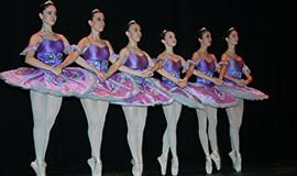 imagen danza clasica
