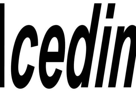loogotipo Acedim web. jpg 480x320 - ACEDIM crea una dirección de correo para que los consumidores denuncien situaciones de fraude o engaño en la enseñanza de idiomas en Madrid