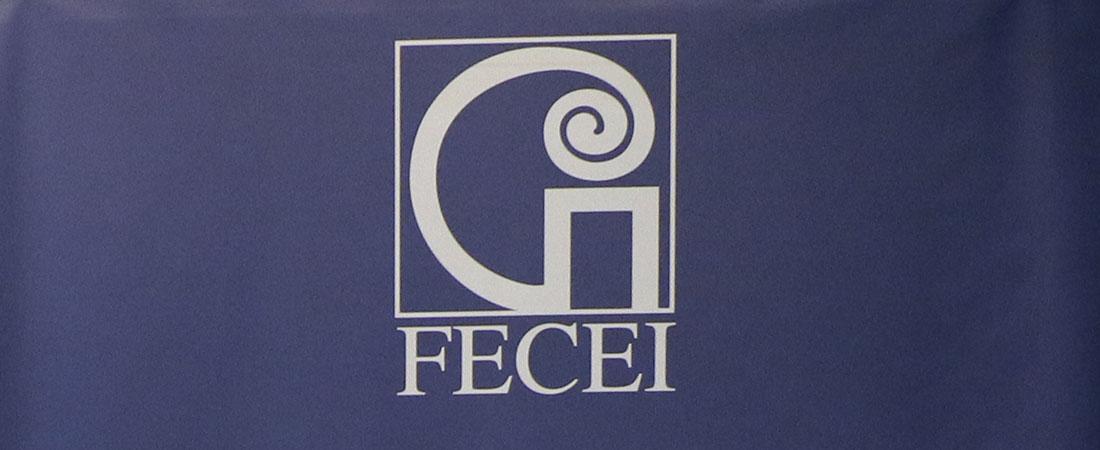 logo fecei web - El 20 de mayo Bilbao celebra la Feria de empleo para profesores de Inglés de FECEI