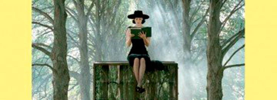 portadas big - El Club de Lectura LAUDE Fontenebro invitaa los amantes de la lectura de la sierra madrileña