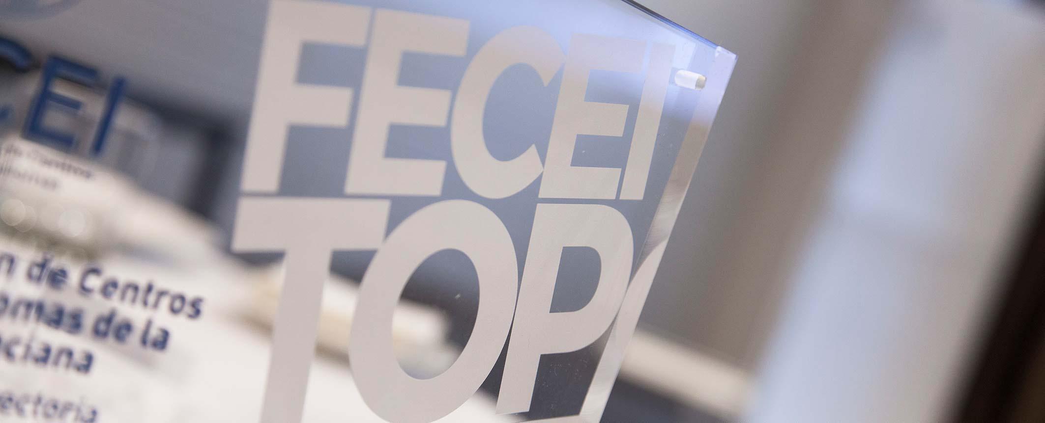 fecei top - Enhorabuena a los quince nominados a los Premios FECEI TOP 2019