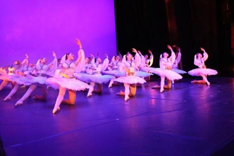 gala danza 2019 24 480x320 - El 31 de diciembre termina el plazo para la preinscripción del curso Didáctica del Ballet Clásico: Pedagogía de Puntas