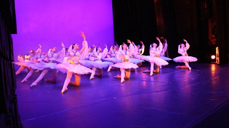 gala danza 2019 24 - Abierta la preinscripción para el curso Didáctica del Ballet Clásico: Pedagogía de Puntas