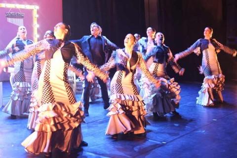 gala danza 480x320 - Comunicado de la Junta Directiva de la Sectorial de Danza de ACADE