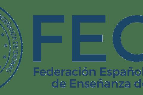 """Logo FECEI Horizontal A Transparente 480x320 - Scott Markham: """"Gracias al esfuerzo de todos los profesionales del sector, un alto porcentaje de nuestros socios están prestando sus servicios"""""""