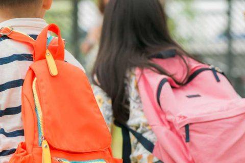 niños primaria 480x320 - ACADE elabora una Guía para la Reapertura de Centros de Enseñanza Reglada en colaboración con el resto de patronales y sindicatos del sector